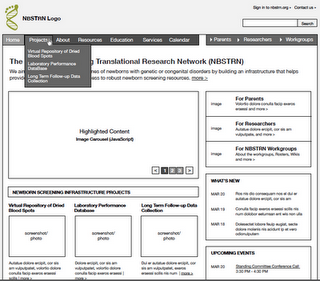 nbstrn wireframe resized 600